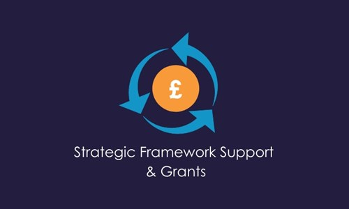 COVID-19 Strategic Framework Support